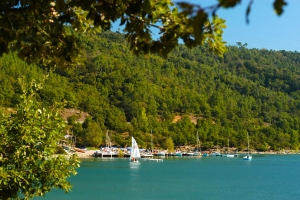 Le Lac de Saint-Cassien